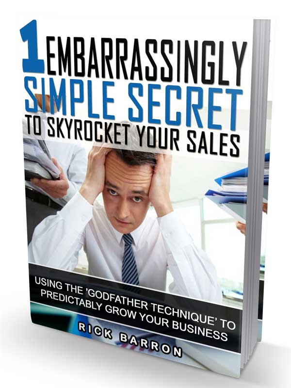 Business Development Consultant eBook Cover